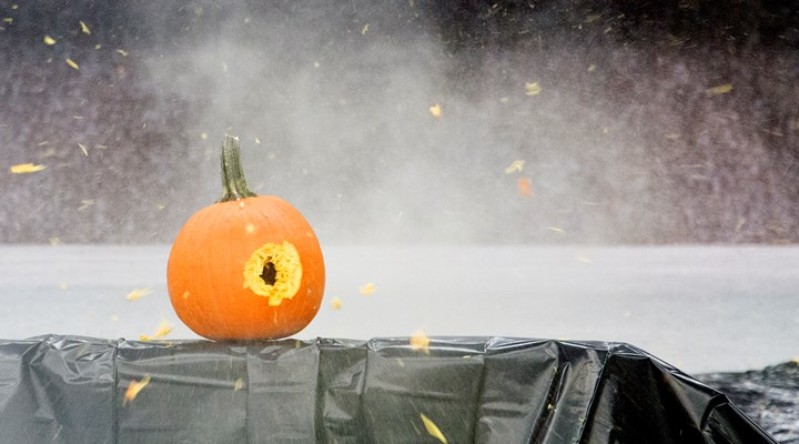 Video: Pumpkin Carving at NRA Headquarters