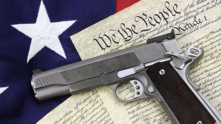 What Is Your State's Gun?