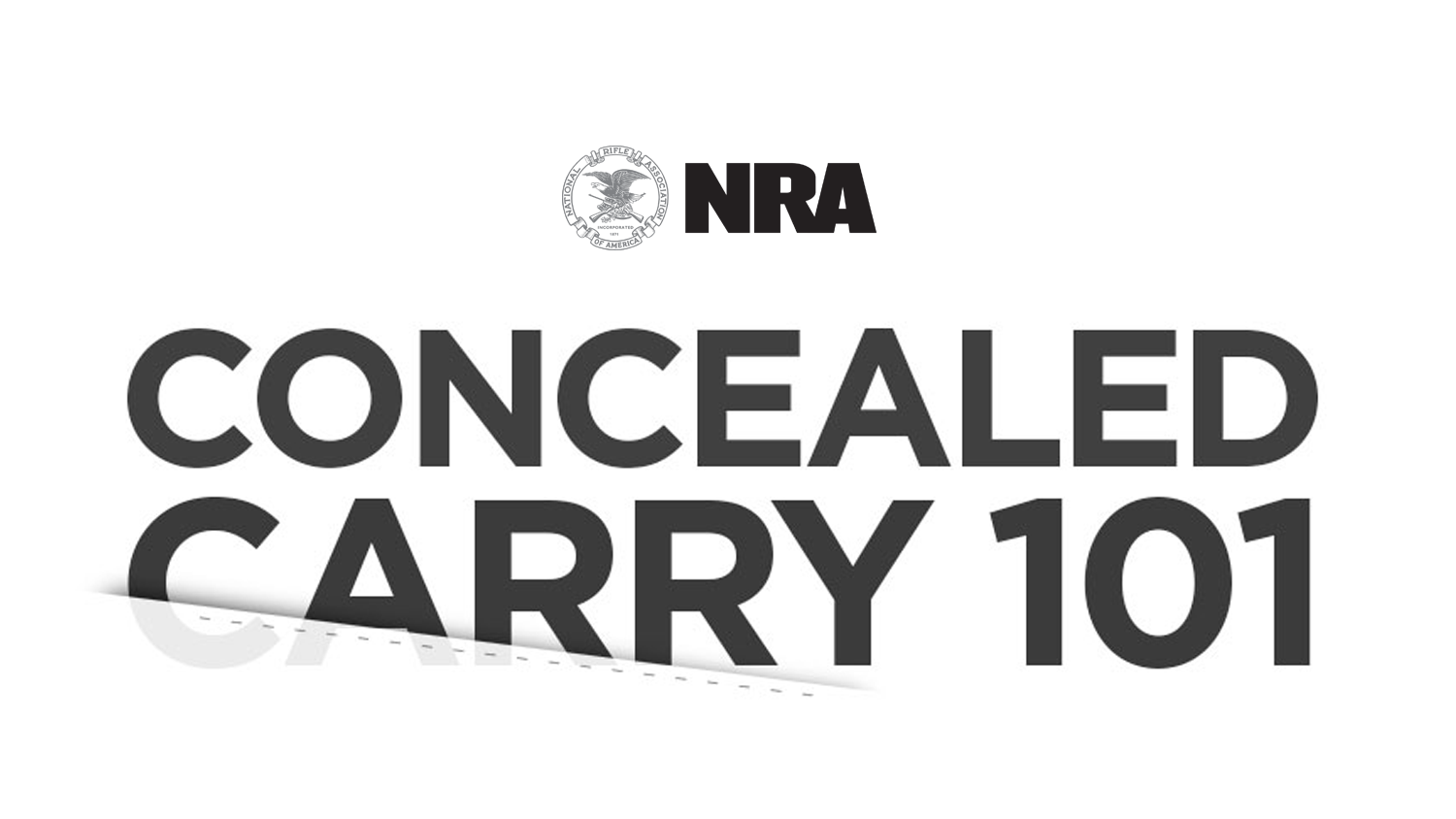 INFOGRAPHIC: Concealed Carry 101