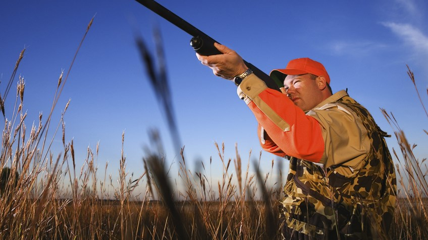 6 Shotguns for a Successful Upland Hunt