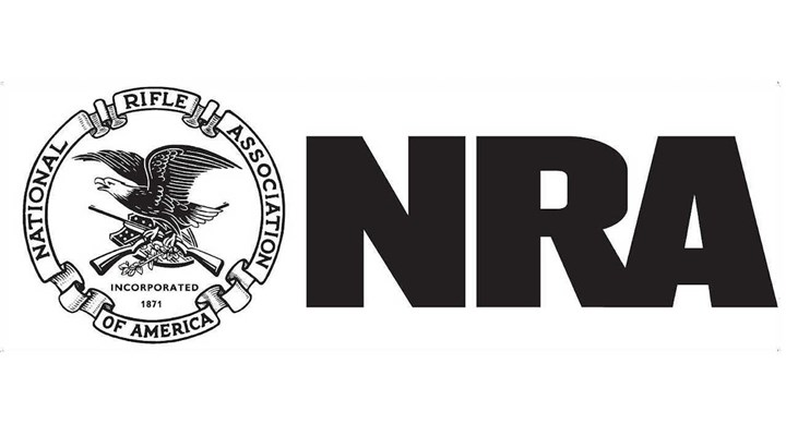Dana Loesch To Serve As Major National Spokesperson For NRA