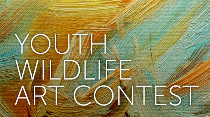 Now Accepting Entries For The 2017 Youth Wildlife Art Contest!