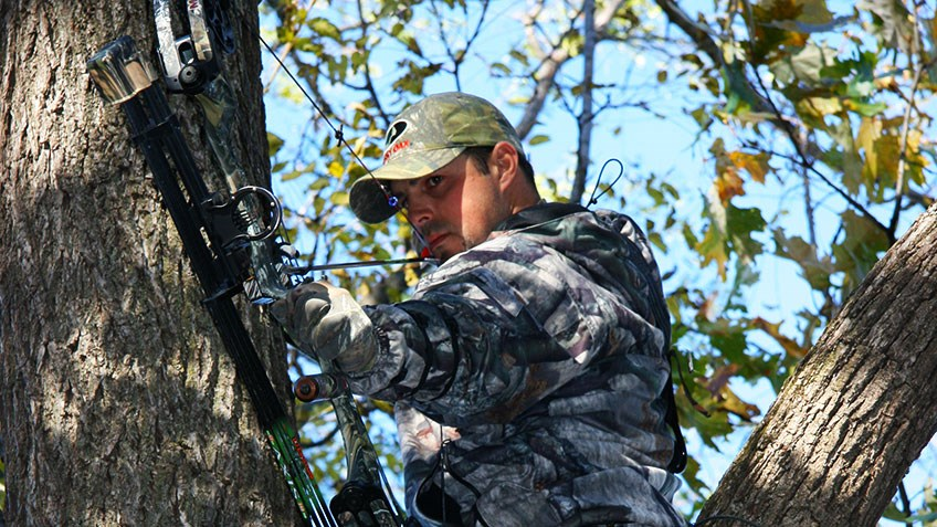 A Beginner's Guide to Bowhunting