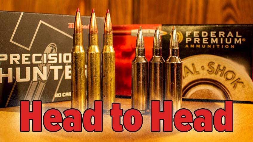 Head to Head: .270 Winchester vs. .270 WSM